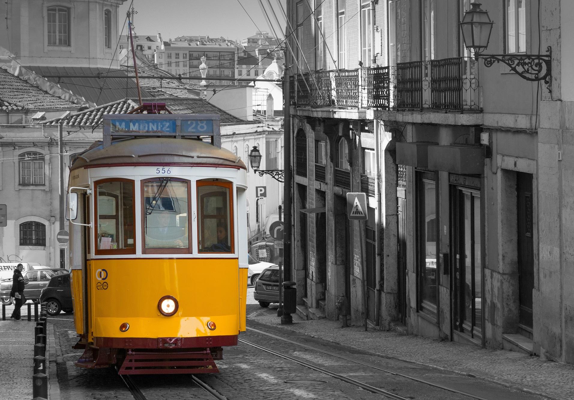 Portugués / Portugues